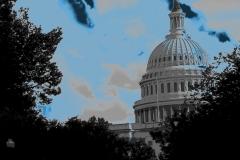 Washington DC Capital View