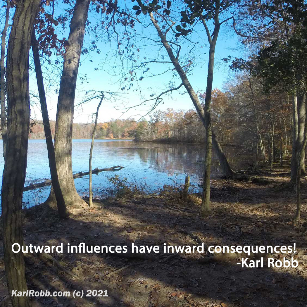 Picture of Burke Lake Park with quote Outward influences have inward consequences - by Karl Robb 2021