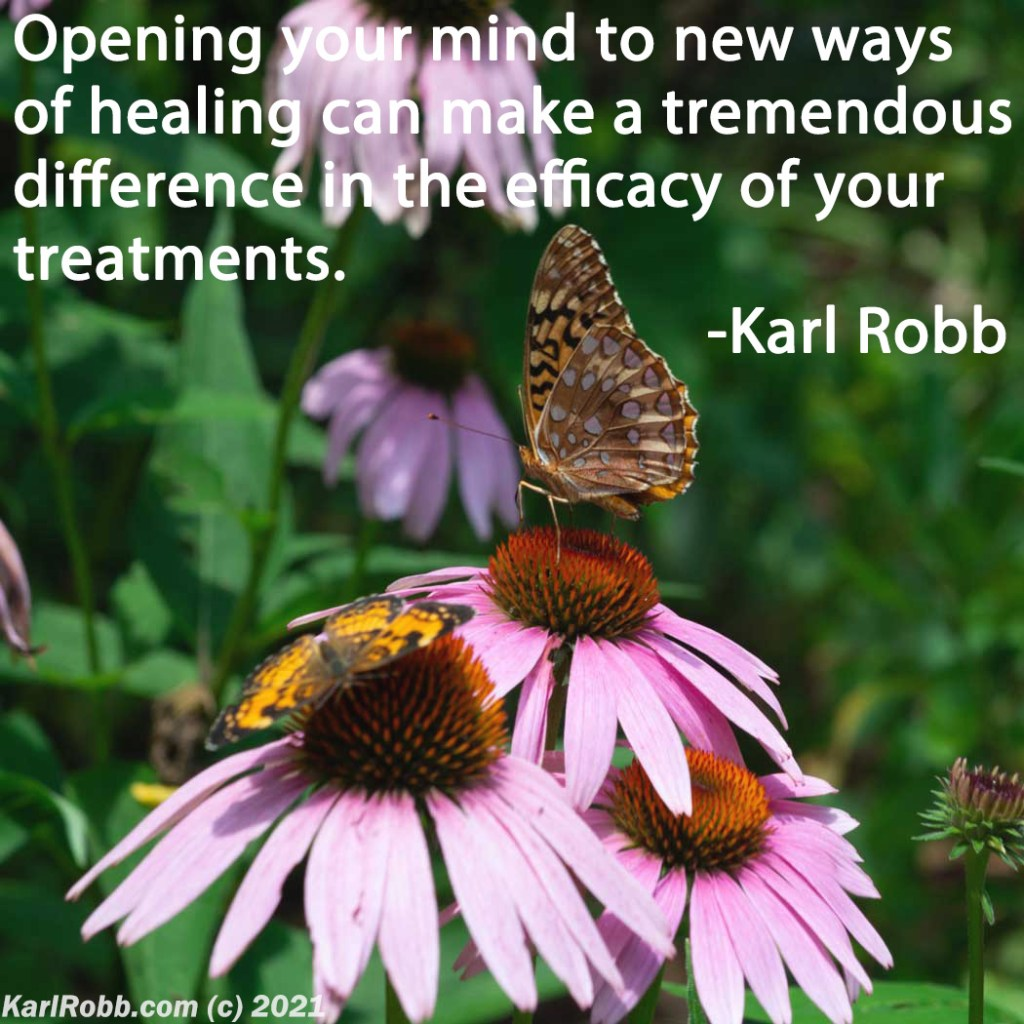 opening your mind to news ways of healing with picture of echinacea flowers and butterflies karl robb