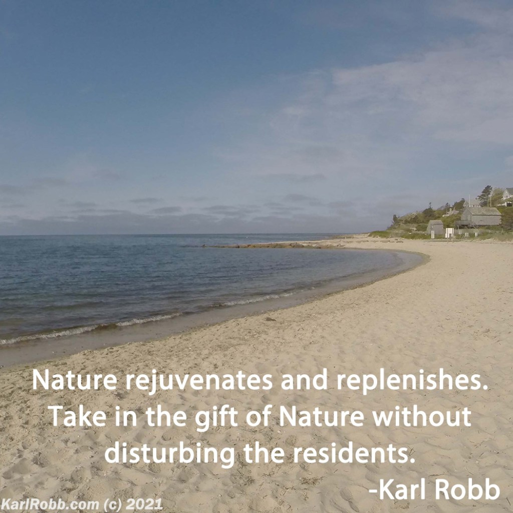 Picture of Cape Cod Beach by Karl Robb