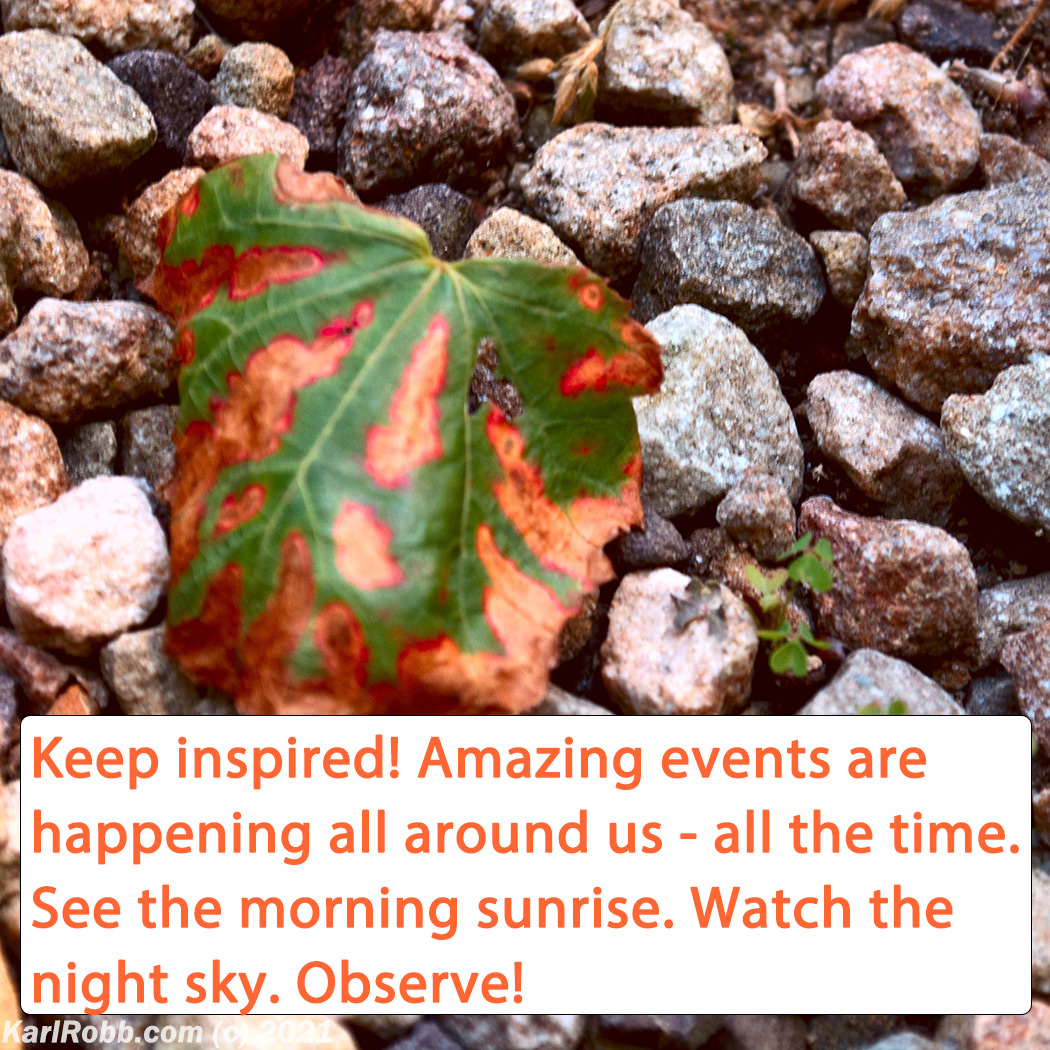 Picture of leaf lying on small multi-colored gravel with quote: Keep inspired! Amazing events are happening all around us - all the time. See the morning sunrise. Watch the night sky. Observe! by Karl Robb #MotivationMonday